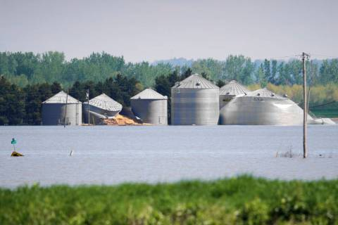 In this May 10, 2019, photo, grain bins belonging to Brett Adams are surrounded by flood waters ...