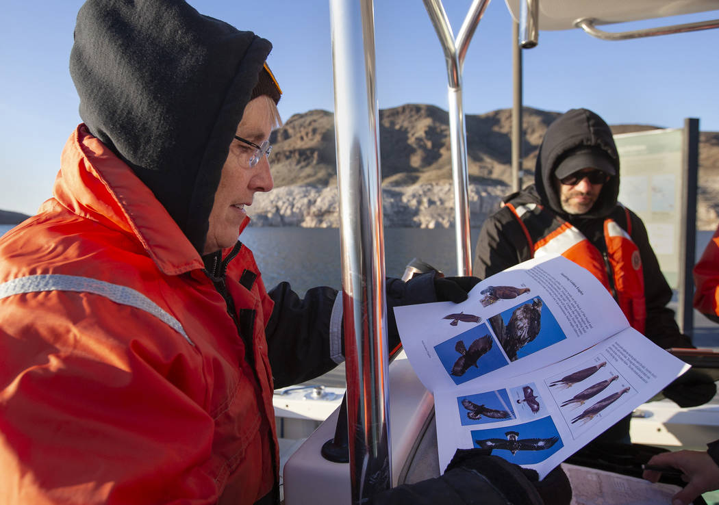 Linder Rohrbach, a second-time eagle survey volunteer, reviews how to classify different types ...