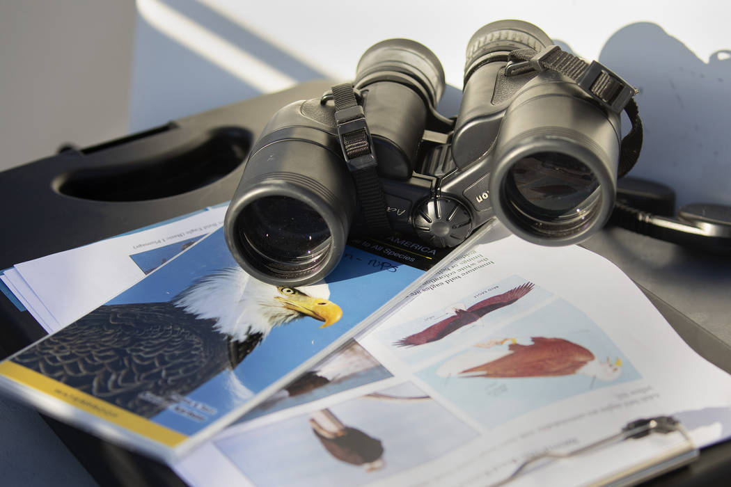 Materials to find and identify eagles sit on the boat during the eagle survey conducted by the ...