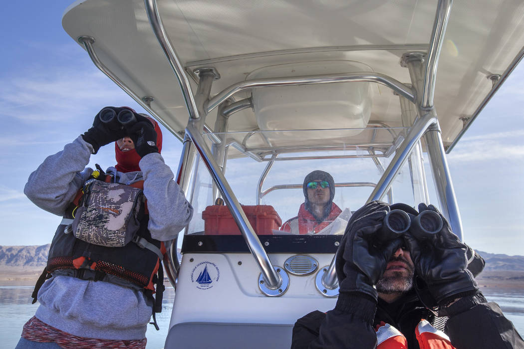 Carrie Norman, left, and Jason Lawor, right, watch for eagles and birds as Alex Swicegood drive ...