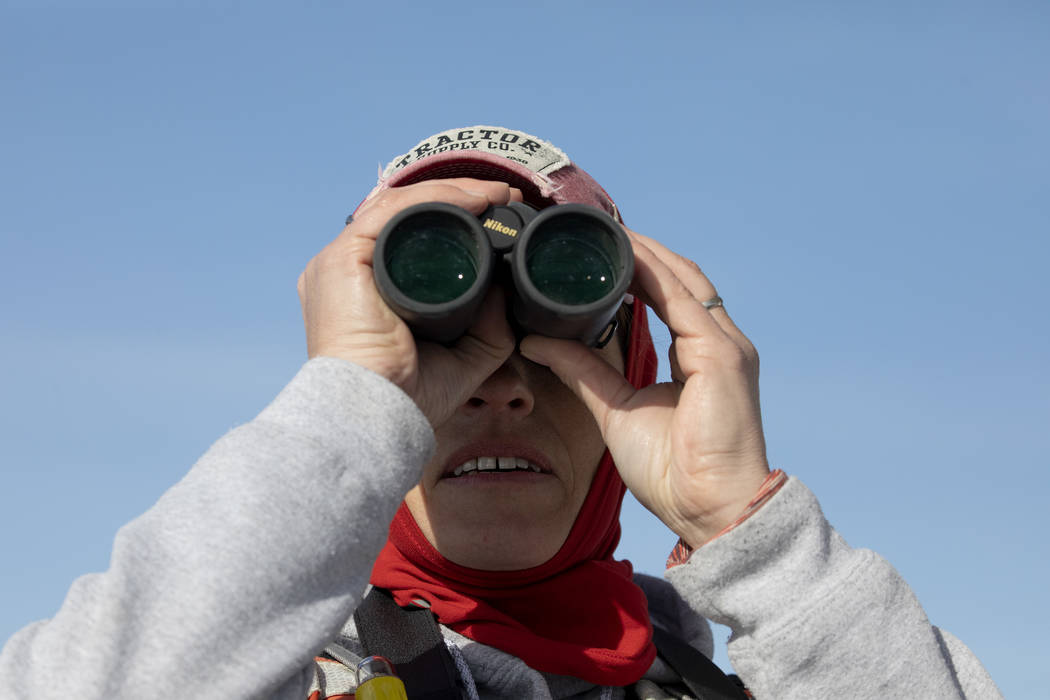 Carrie Norman, a vegetation biologist for the National Park Service, looks for birds during the ...