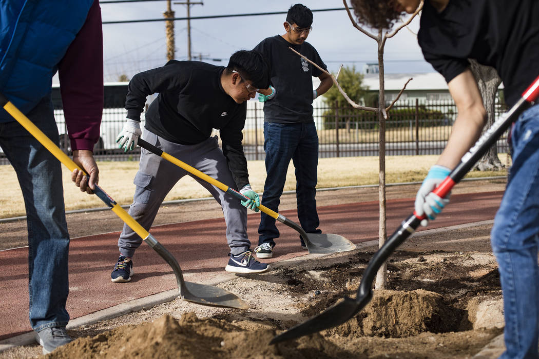 Luis Zamora, 16, and other students plant a tree at Doolittle Park in honor of Dr. Martin Luthe ...