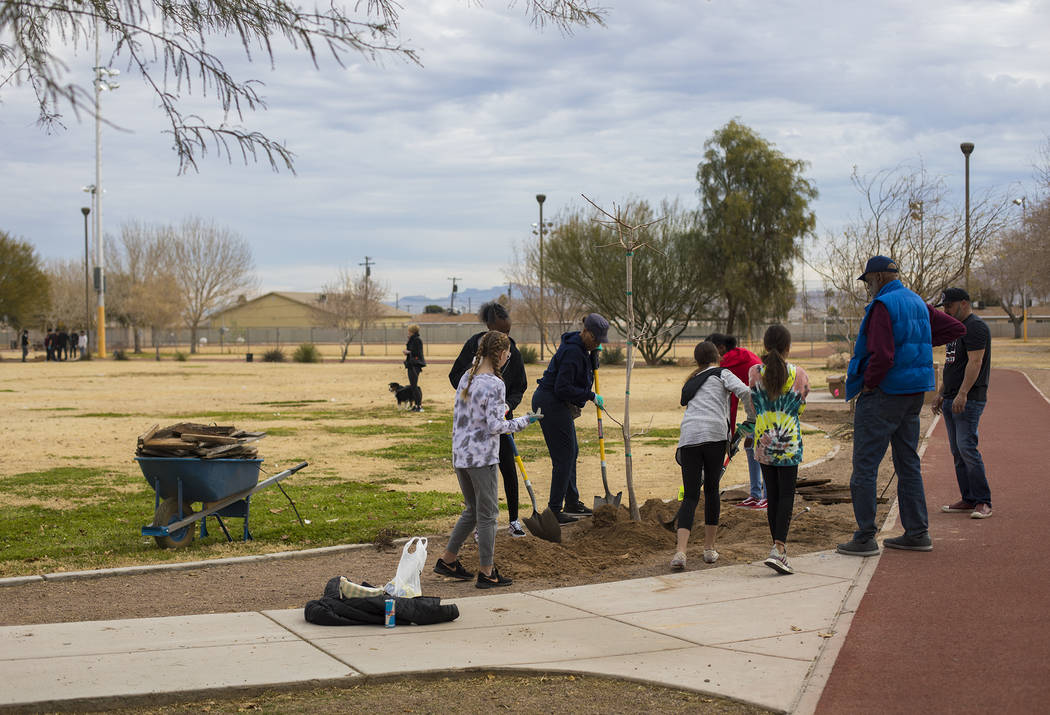 Students and volunteers plant trees at Doolittle Park in honor of Dr. Martin Luther King Jr. Da ...