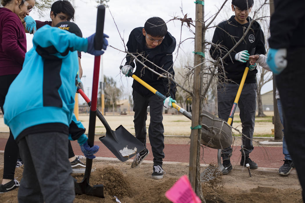 Juan Garcia, 15, center, plants a tree with other students at Doolittle Park in honor of Dr. Ma ...