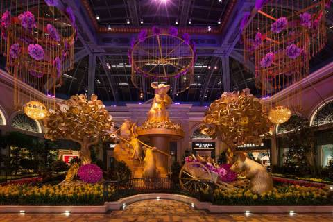 Lunar New Year at Bellagio Conservatory & Botanical Gardens (©Kelly McKeon;KellyCreati ...