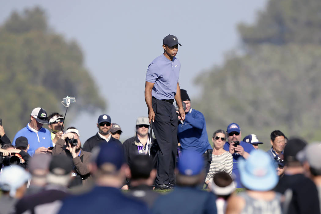 Tiger Woods walks on the 10th green of the Torrey Pines North Course during the first round The ...