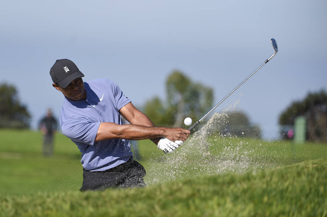 Tiger Woods hits out of the bunker on the 11th hole of the North Course at Torrey Pines Golf Co ...