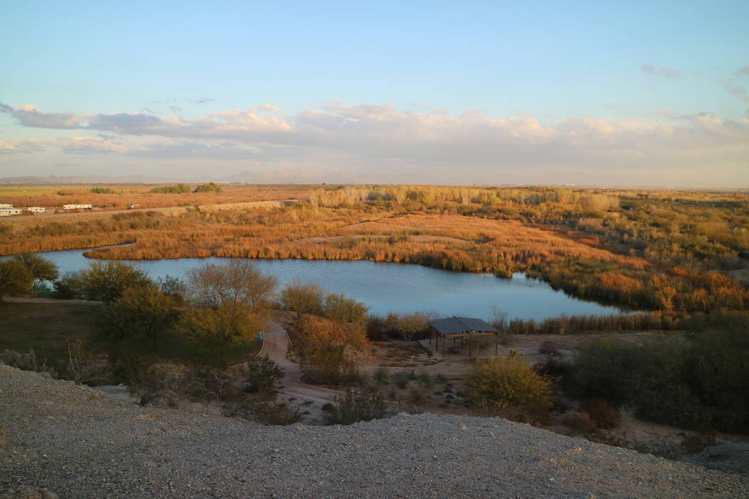 The Yuma East Wetlands offers a natural habitat for birds and wildlife as well as a network of ...
