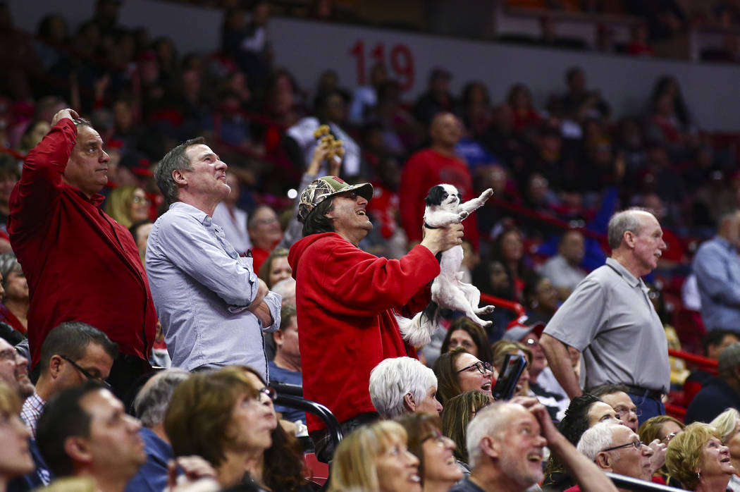 """A UNLV fan raises up their dog for the """"Simba cam"""" during the second half of a basket ..."""