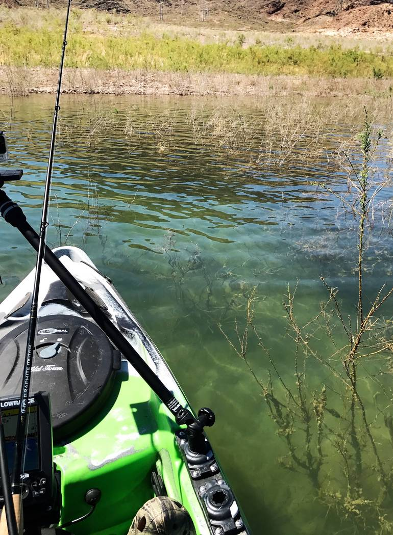 On days with little to no wind, ultra-clear water conditions provide anglers with a chance to s ...
