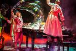 Cirque du Soleil performer falls during show
