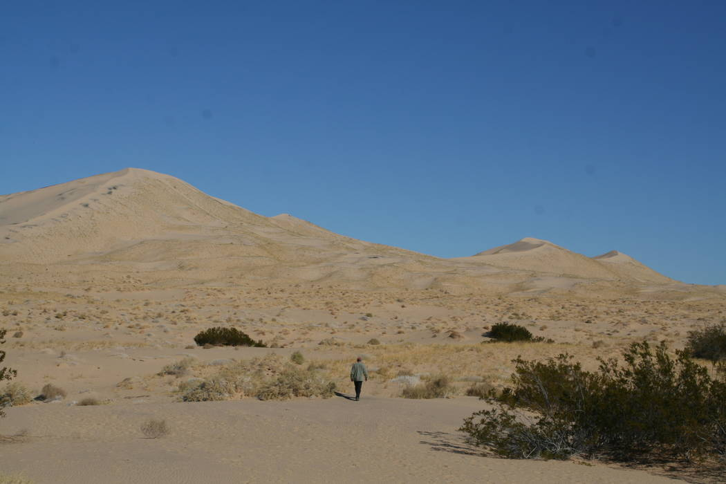 The Kelso Sand Dunes can be accessed by driving about 10 miles south of the Kelso Depot. (Debor ...