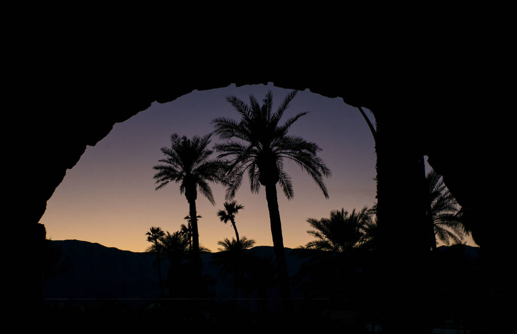 Palm trees at The Inn at Death Valley in Death Valley National Park, Calif, on Tuesday, Jan. 23 ...