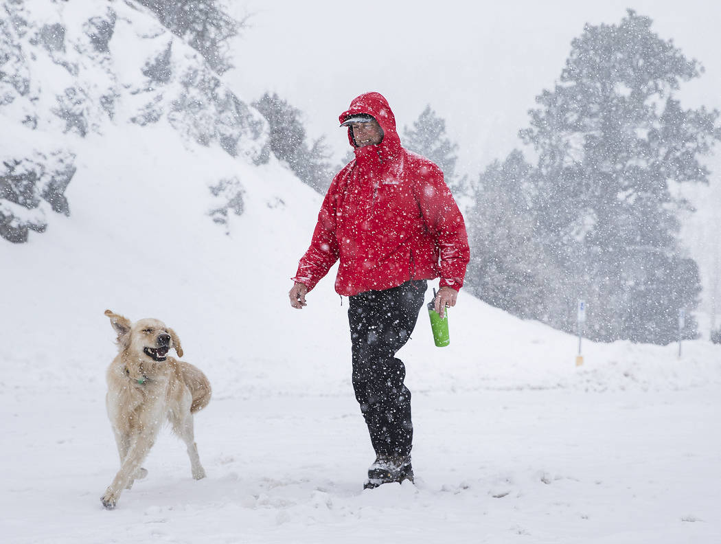 Paul Whitmoyer, right, and golden retriever Kona hike in the snow at Mount Charleston on Wednes ...