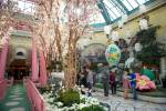 Bellagio Conservatory cutting back on displays this year