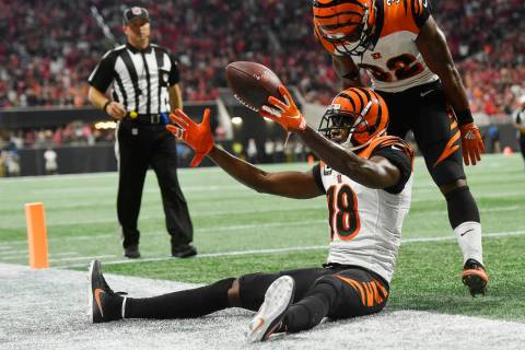 Cincinnati Bengals wide receiver A.J. Green (18) celebrates his game-winning catch against the ...
