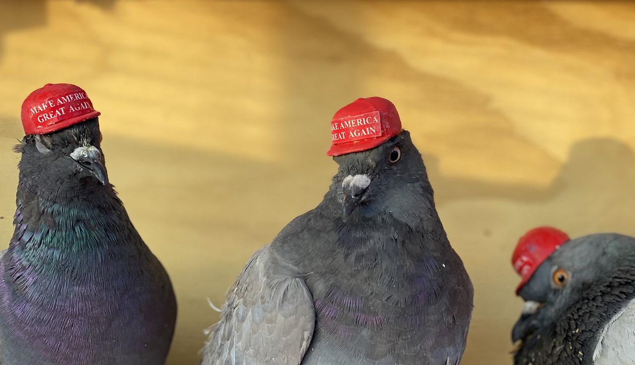 trump uranus