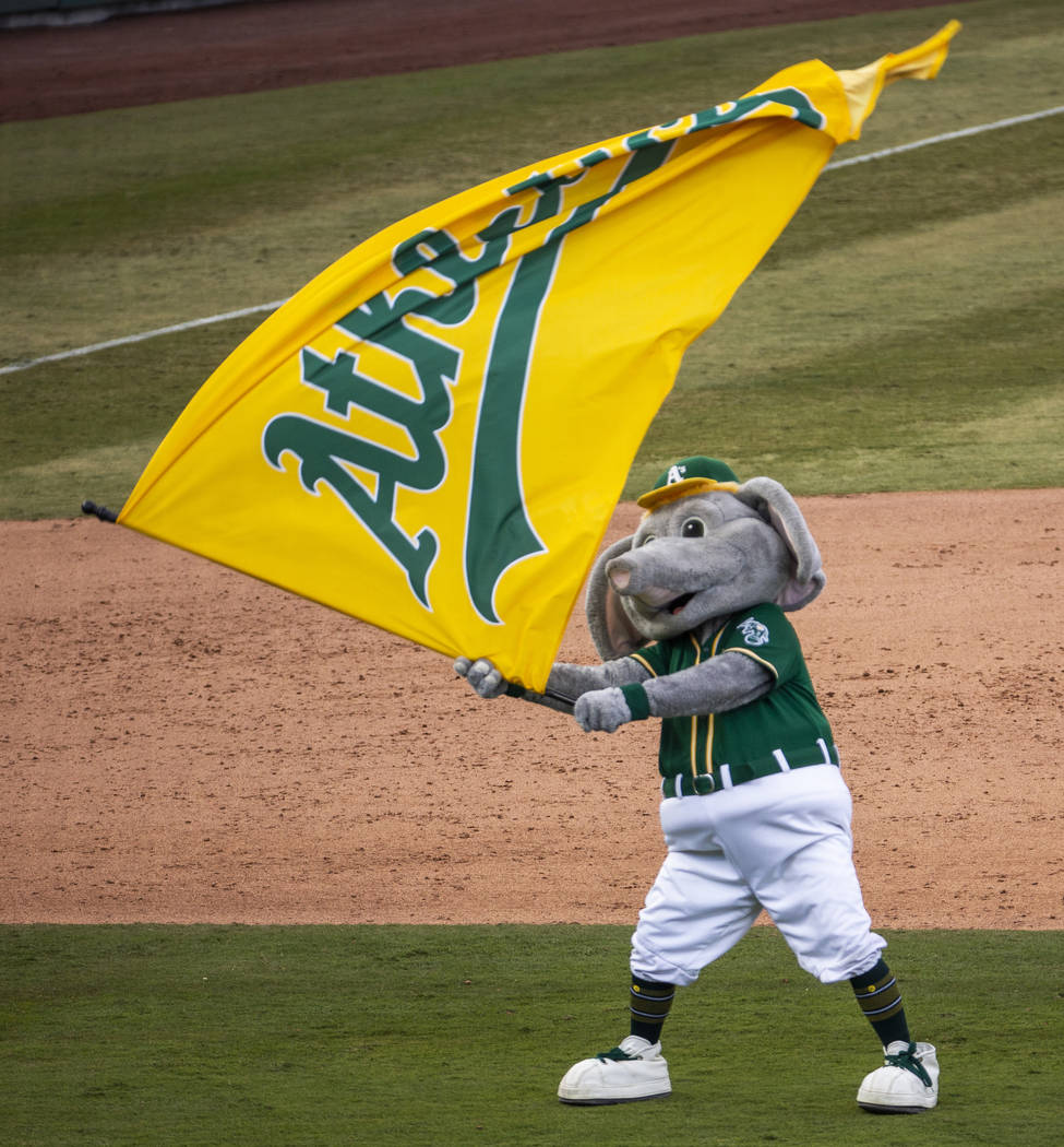 Oakland Athletics mascot Stomper waves the team banner on the field after defeating the Clevela ...