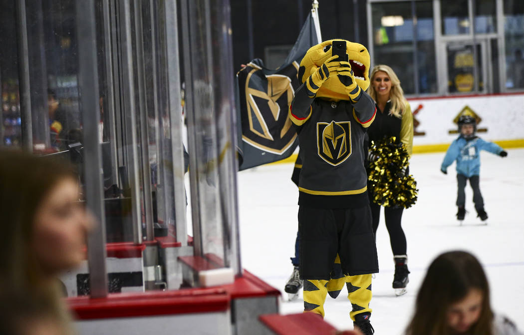 golden knights city national arena