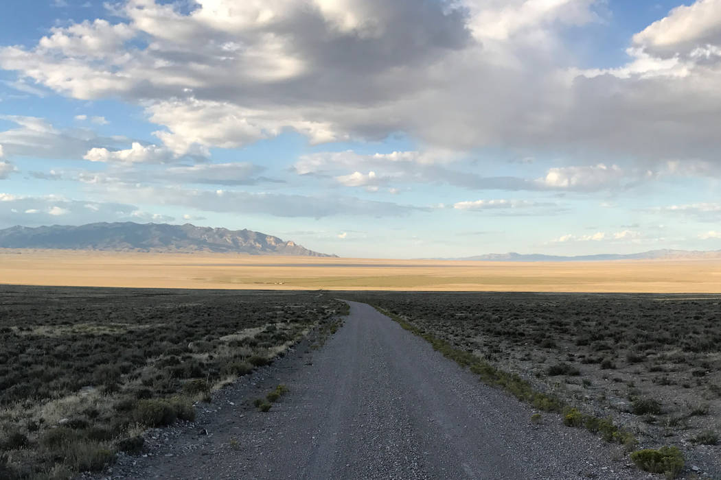 Typical Nevada pronghorn habitat. Note the low-growing vegetation and wide-open spaces. Part of ...