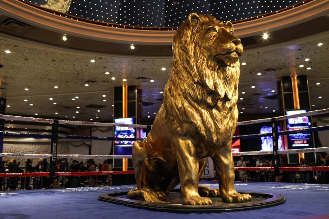 A statue of the MGM lion sits inside a boxing ring at the MGM Grand lobby as guests check in to ...