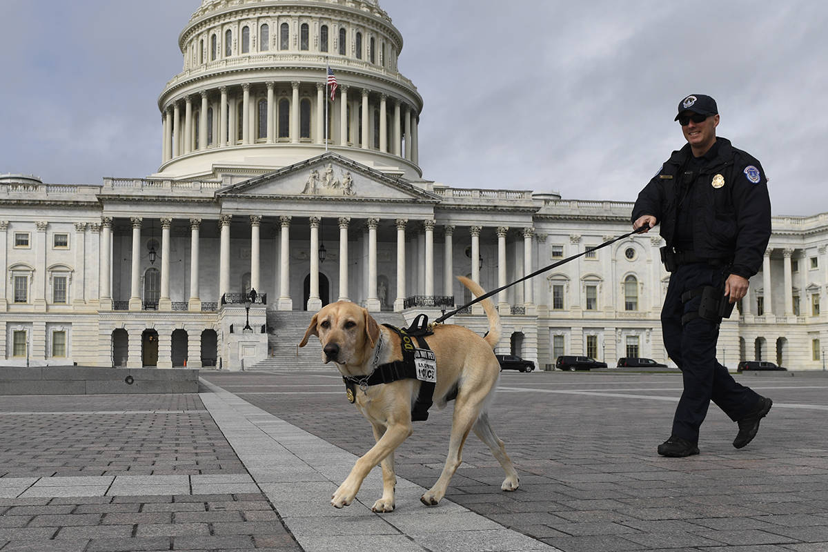 A Capitol Hill police officer and his dog patrol Capitol Hill in Washington, Tuesday, March 17, ...