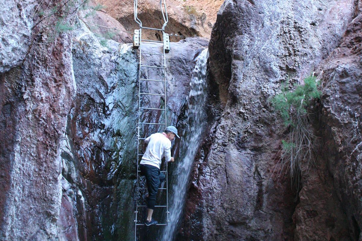 arizona hot springs trail closes temporarily las vegas review journal arizona hot springs trail closes