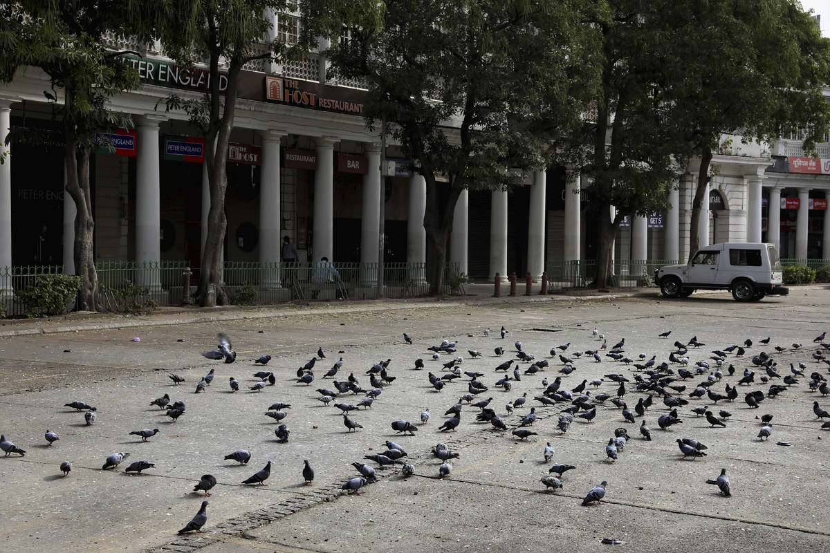 Pigeons at a parking lot on the first day of a lockdown amid concerns over the spread of Corona ...