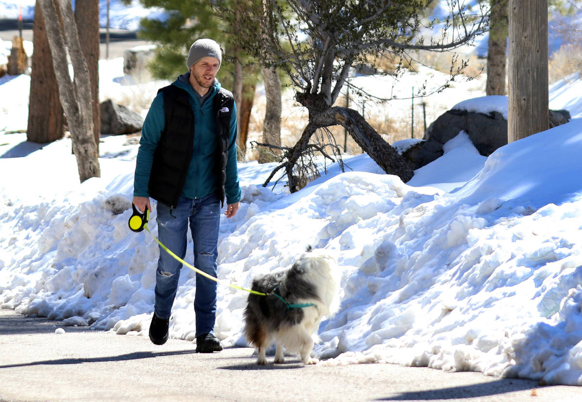 Matt Golightly walks his dog, Penelope, at Mount Charleston on Tuesday, March 24, 2020. (Bizuay ...
