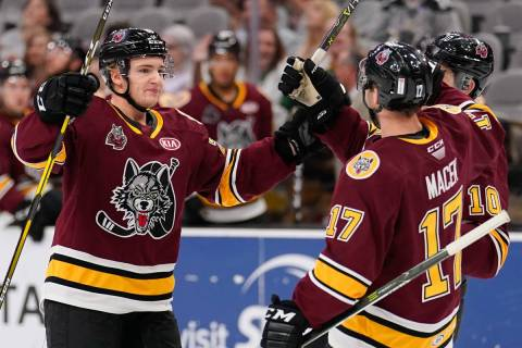 The Chicago Wolves play the San Antonio Rampage during the third period of an AHL hockey game, ...
