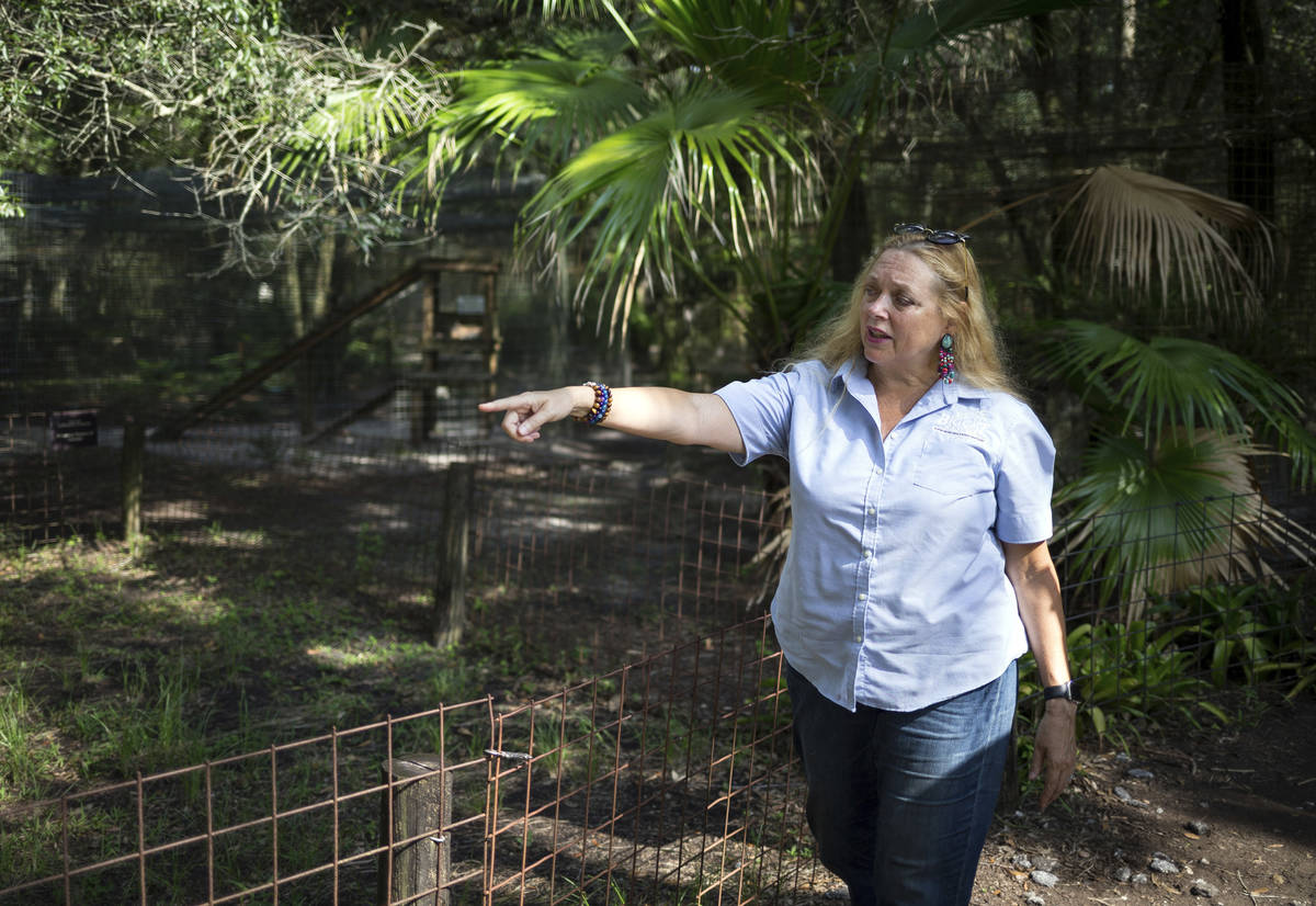 FILE - In this July 20, 2017 file photo, Carole Baskin, founder of Big Cat Rescue, walks the pr ...