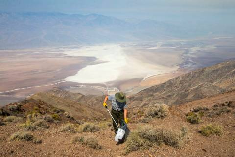 In this Aug. 7, 2018, file photo, Death Valley National Park custodian Terry Eddington picks up ...