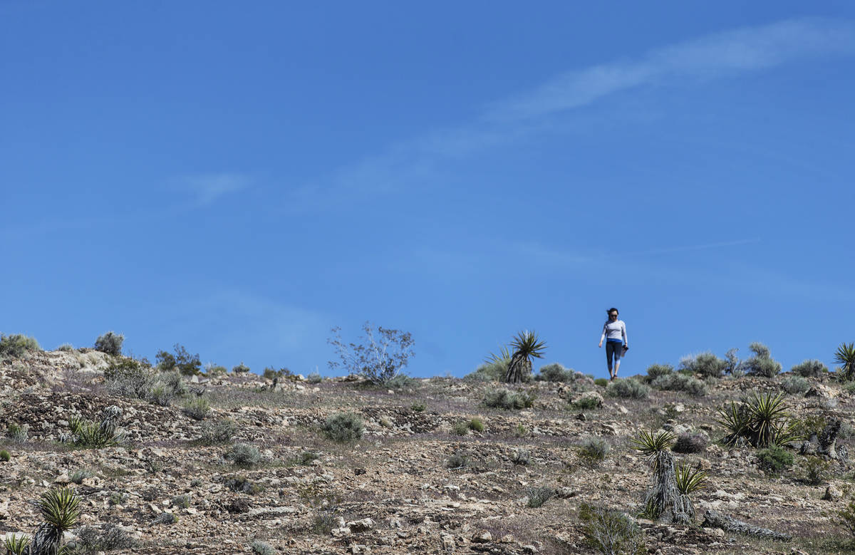 A hiker has the ridge all to herself near Red Rock Canyon National Conservation Area on Saturda ...