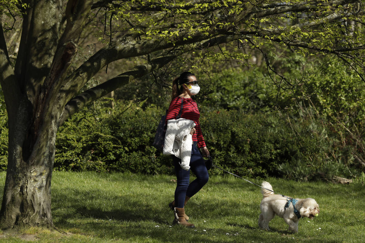 A dog walker wears a face mask in Regent's Park, London, as London's parks remain open with the ...