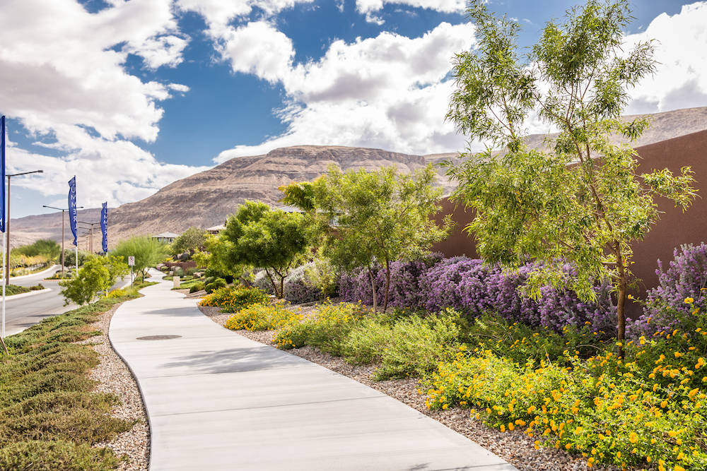 Summerlin has long fostered a culture of environmentally sensitive development as one of the va ...