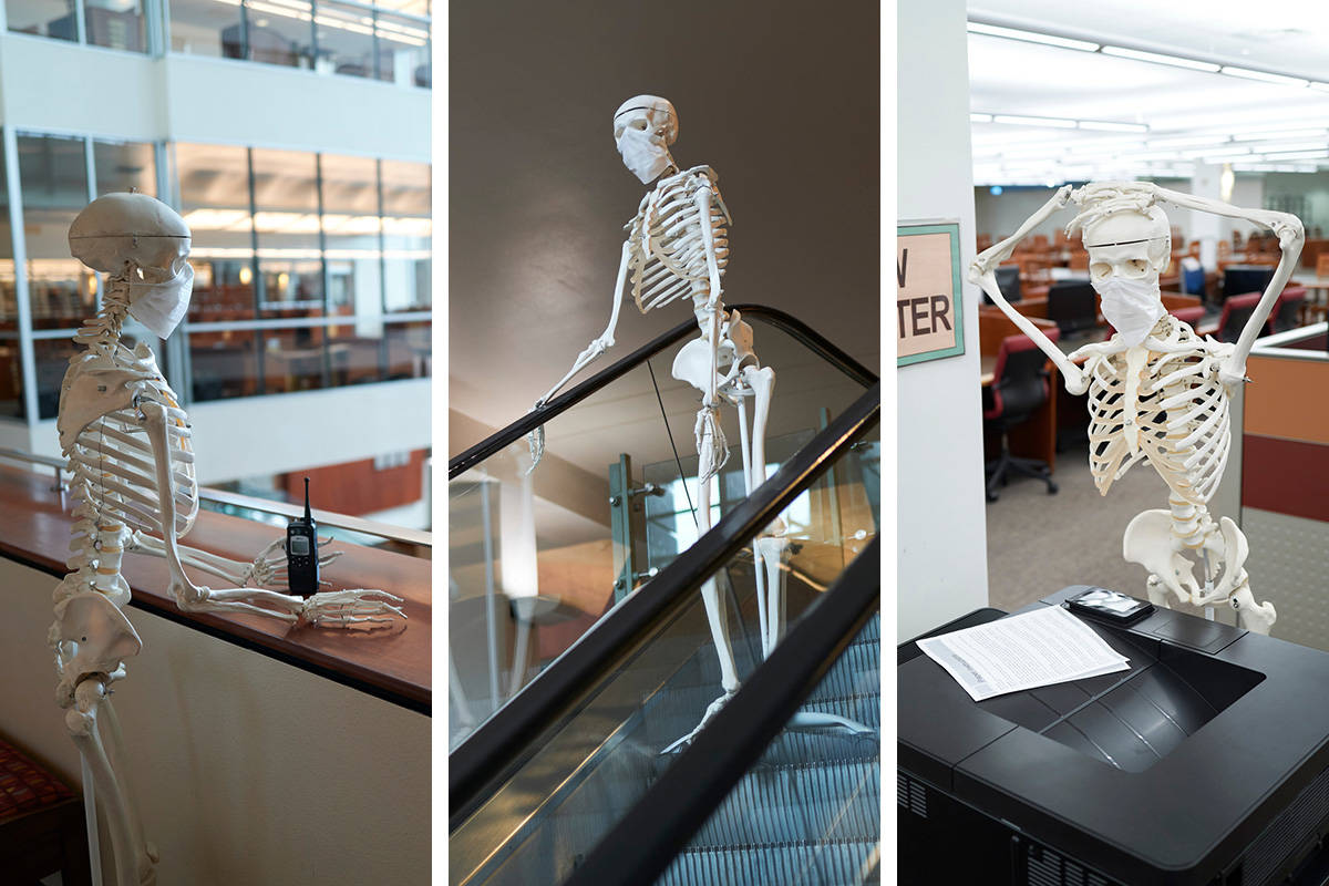 At UNLV's Special Collections and Archives, Mandy the Skeleton patrols the school's library ...