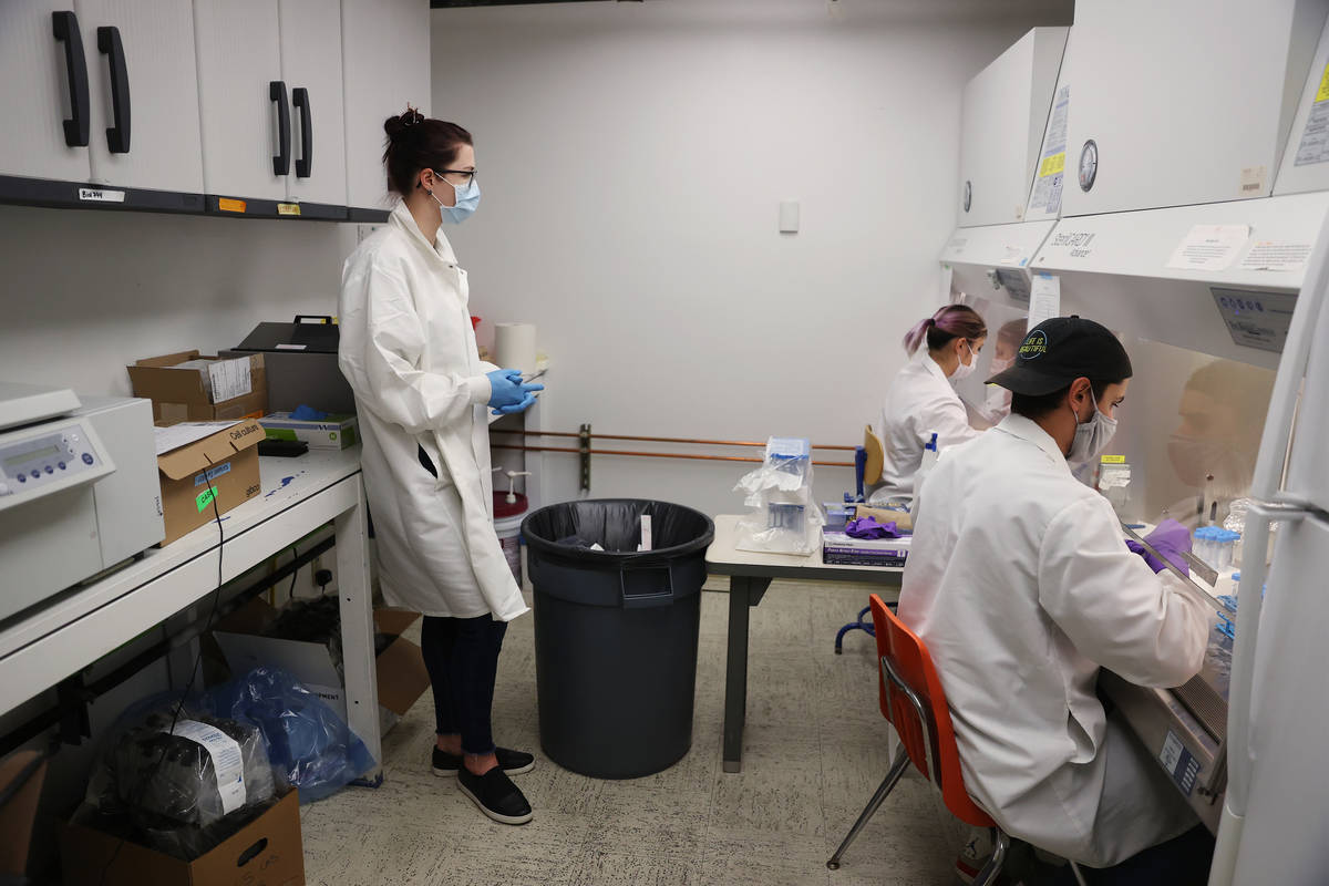 Lab manager Monika Karney, from left, watches over graduate students Naomi Okada and Chandler H ...
