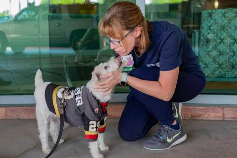Clinical supervisor Stephanie Aceto receives a kiss from Bark-Andre Furry while he wears a Gold ...