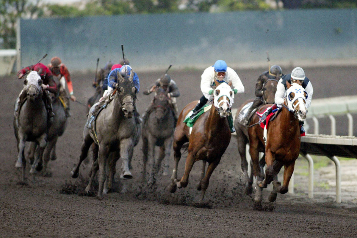 Standard Setter, far right, with jockey Roberto Gonzalez, leads as the field makes the turn for ...