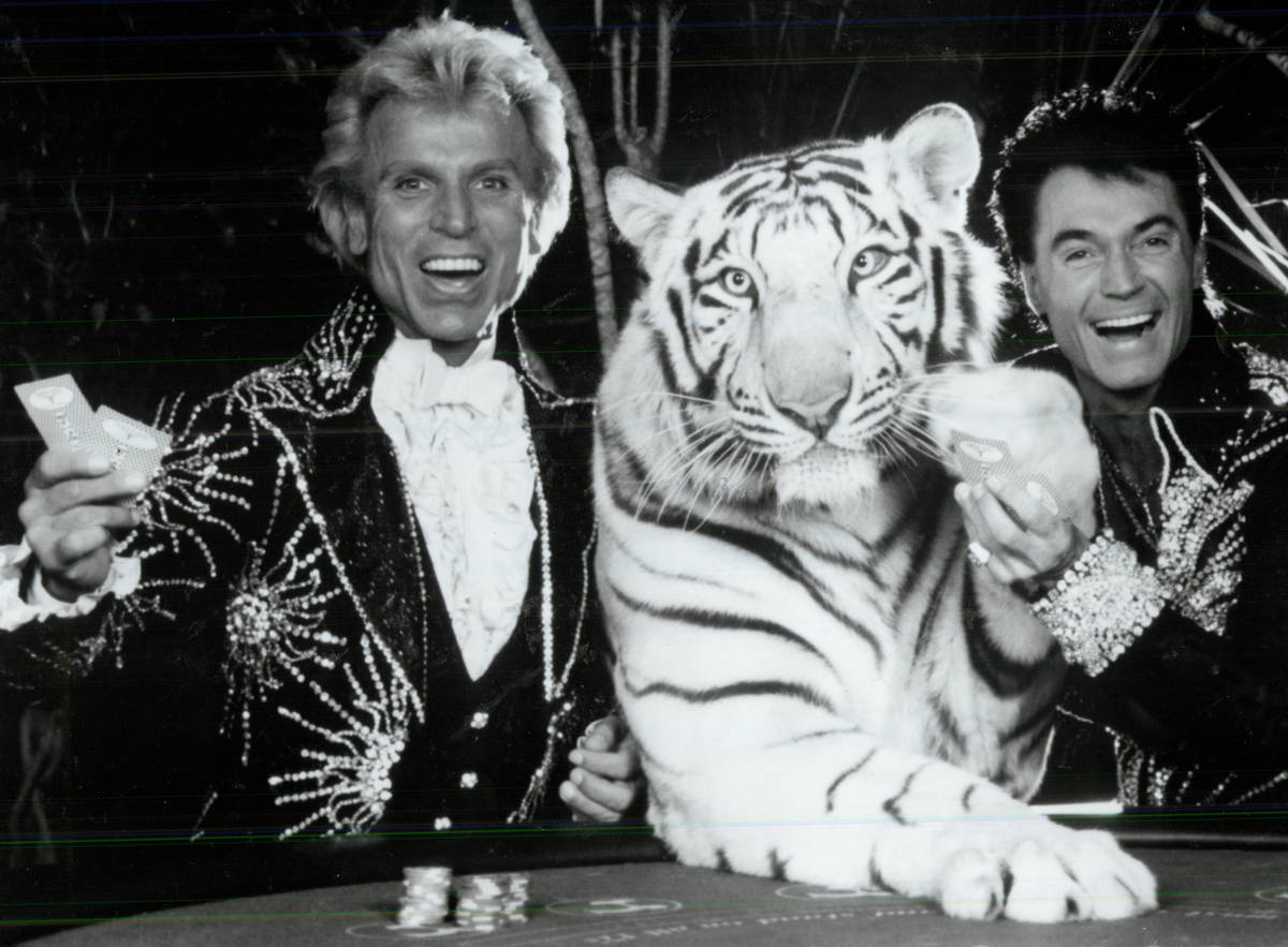 Siegfried and Roy at the Tropicana in May 1985. (Tropicana)