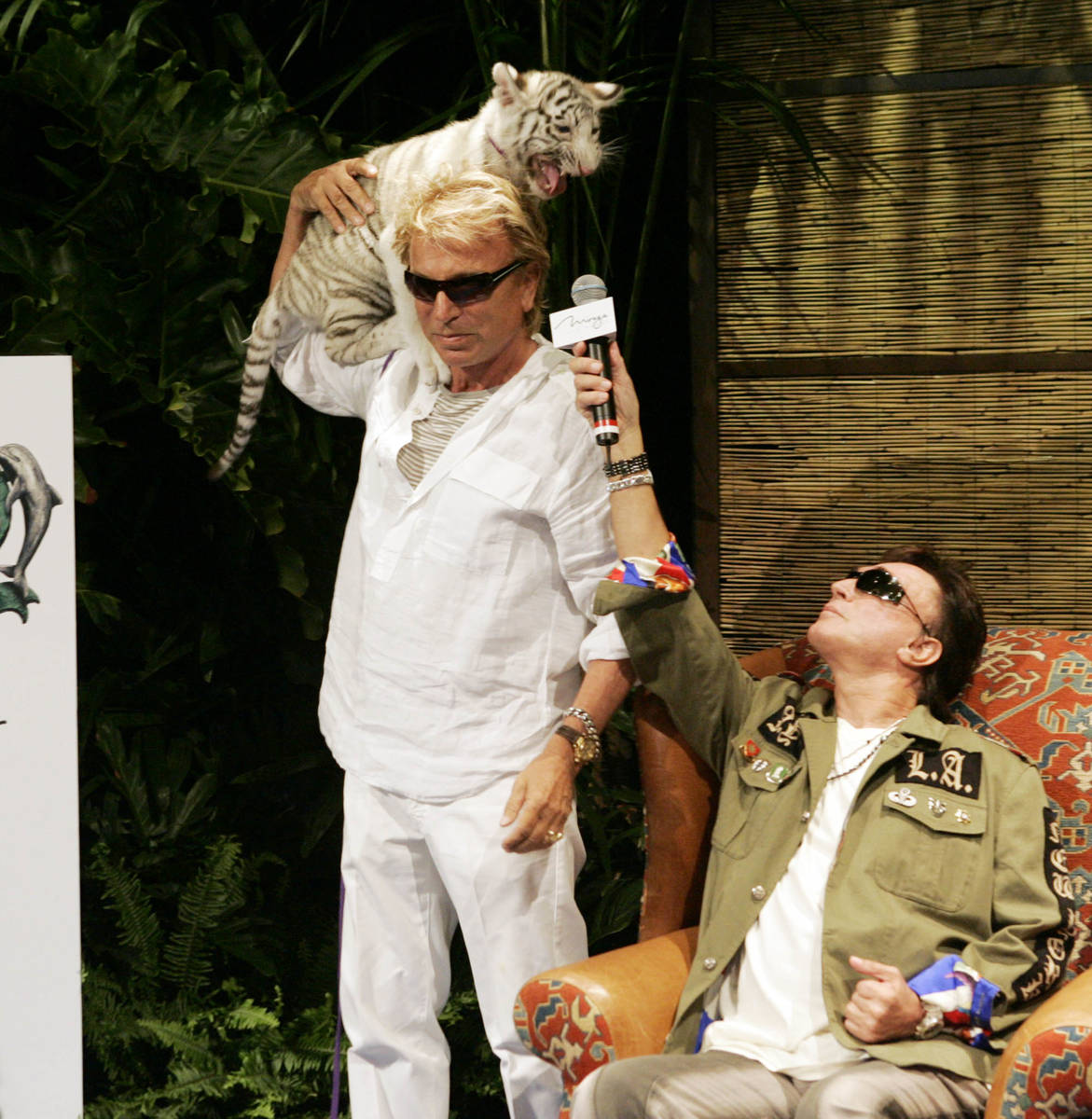 "Siegfried Fischbacher, left, holds ""Star,"" a 12-week-old female white tiger, as his show busine ..."