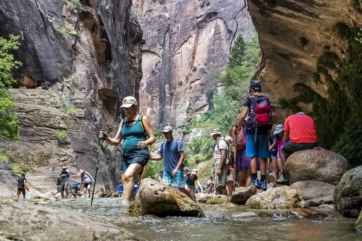 Zion National Park visitors walk along The Narrows, a river hike through the Virgin River, at Z ...