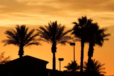 Palm trees are silhouetted as the sun rises on Wednesday, May 27, 2020, in Las Vegas. Temperatu ...