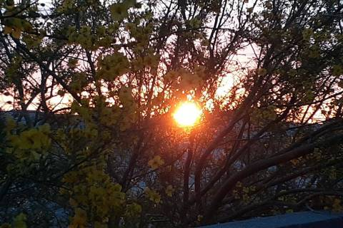 The sun rises about 5:45 a.m. over a south Las Vegas Valley subdivision on Saturday, May 30, 20 ...