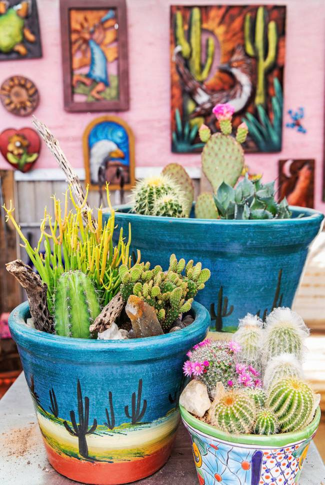 Clustering cacti, agave and other small desert plants combine to create an appealing and low-ma ...