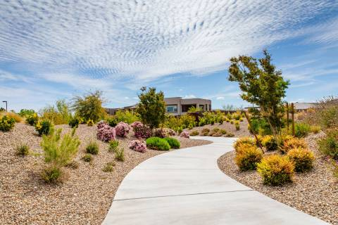 With more than 150 miles of trails meandering throughout the community, Summerlin is known for ...