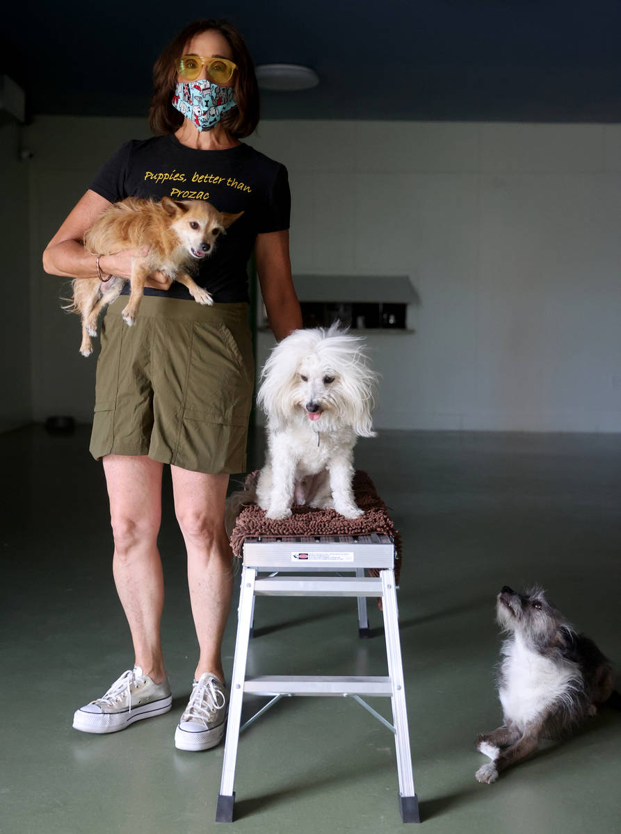 Cathy Brooks, owner of The Hydrant Club, with her dogs, from left, Harlow, Inigo Montoya and Br ...