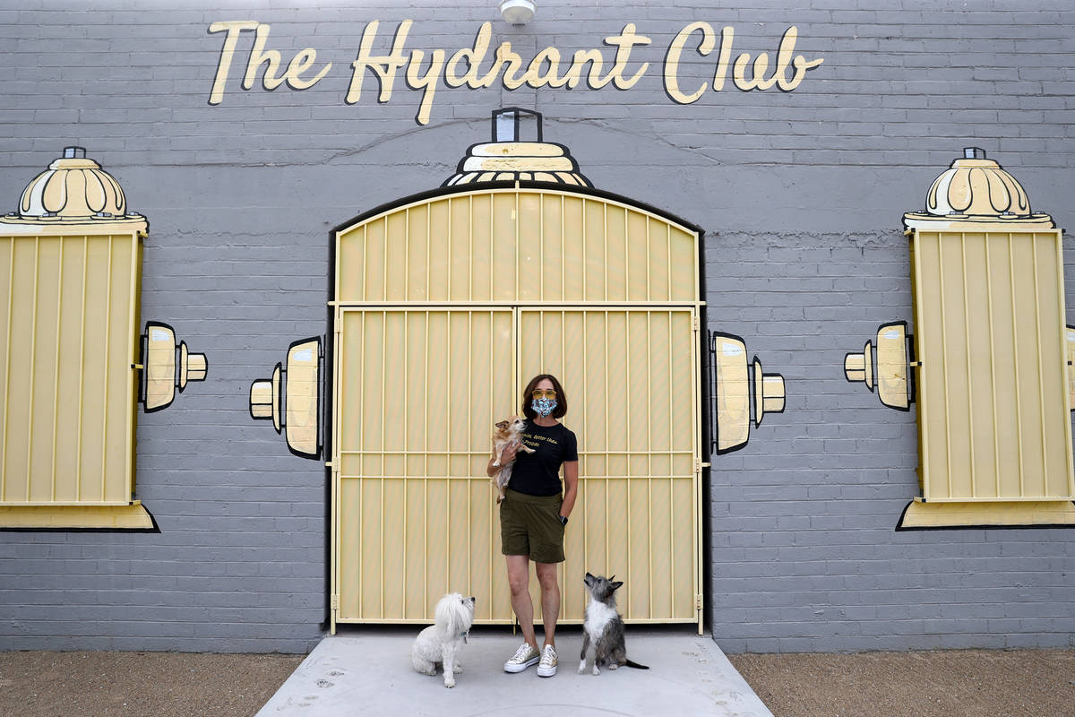 Cathy Brooks, owner of The Hydrant Club, with her dogs, from left, Inigo Montoya, Harlow and Br ...