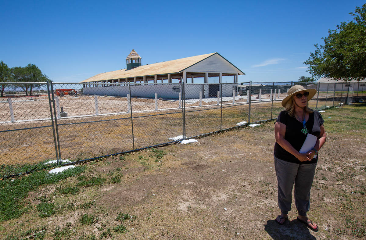 Karen Livingston, leader of the Save Floyd Lamb Park action group, stands in front of the histo ...