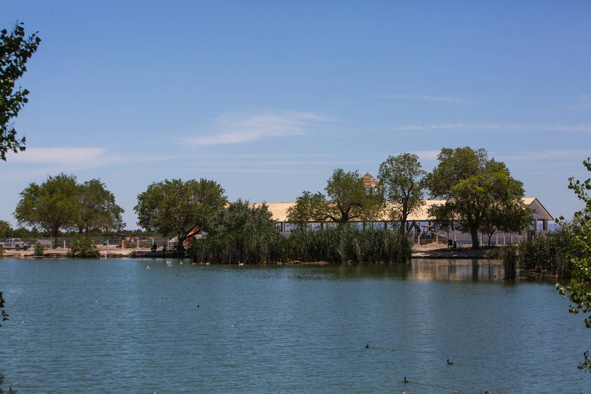 The historic hay barn can be seen on the other side of a lake in Floyd Lamb Park in Las Vegas o ...